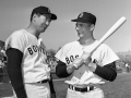 Williams and Yastrzemski