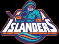 New York Islanders Logo 1995-97
