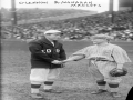 1916 World Series Mascots