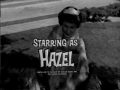 Shirley Booth as Hazel