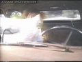 The Muppet Movie 1993 VHS and Laserdisc trailer as seen in North America