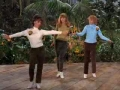 Gilligans Island- The Honey Bees