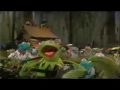 The Muppets at Disney World