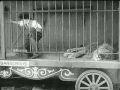 Charlie Chaplin in Lions Cage
