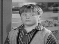 Vanishing TV Character- Larry Mondello