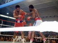 Foreman-Lyle Fight 1976