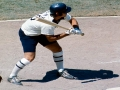 Chicago White Sox in Shorts