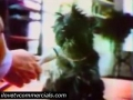 Funny Purina Dog Chow Commercial