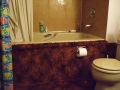 Shag Carpeted Bathroom