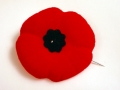 Poppy - Symbol of Remembrance